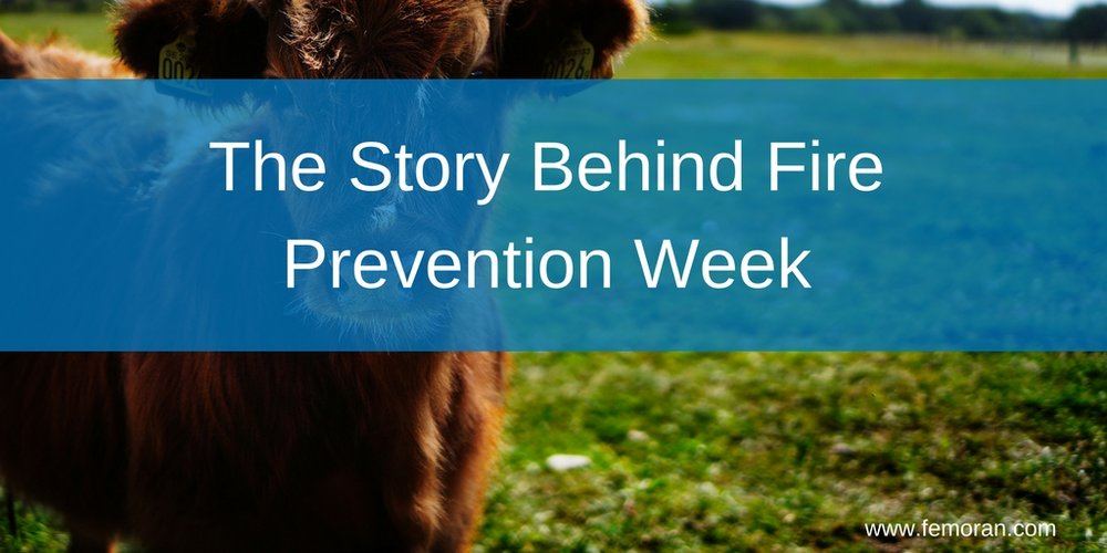 The Story Behind Fire Prevention Week.jpg