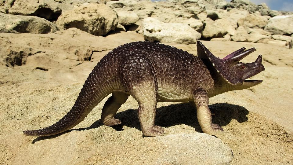 triceratops-1640111_960_720.jpg