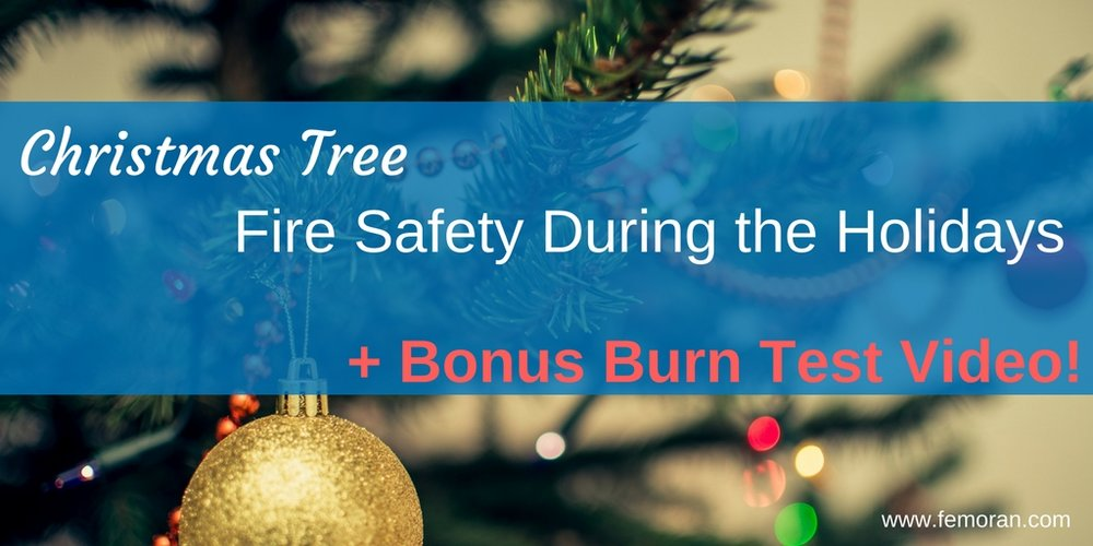 Christmas Tree Fire Safety.jpg