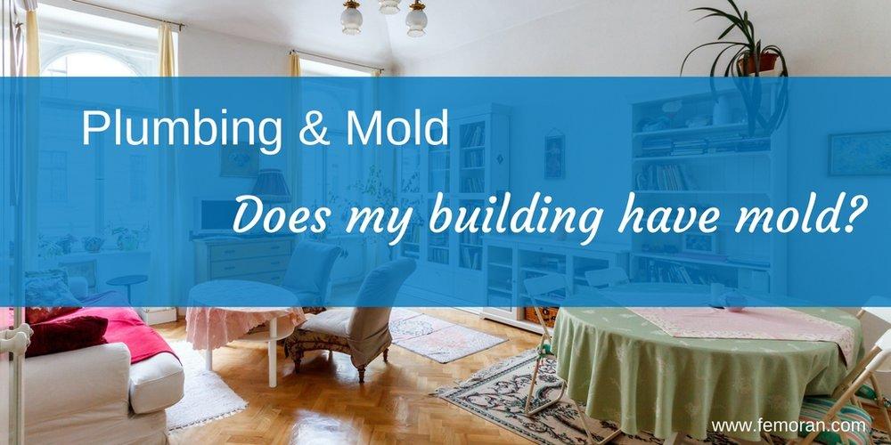 plumbing and mold.jpg