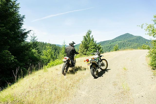 Well, I figure I'll buy me a motorcycle; Wrap her pretty little frame around a telephone pole. Ride her off a mountain like old Arlo; Figure I'll buy me a motorcycle - Colter Wall