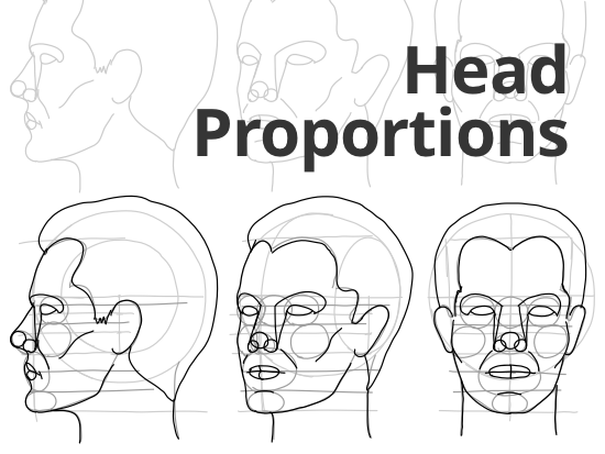 how-to-draw-head-proportion.png