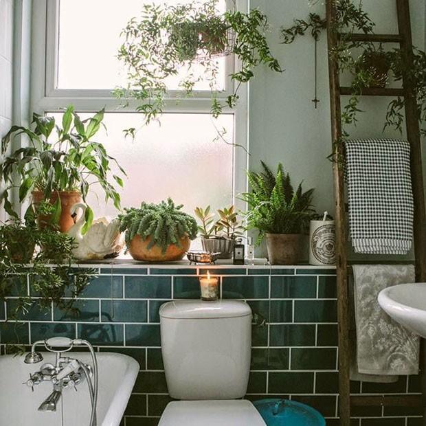 plantas_no_banheiro_4.jpg