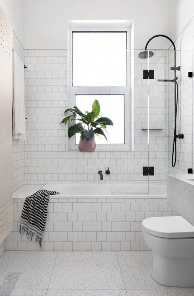 plantas_no_banheiro_7.jpg