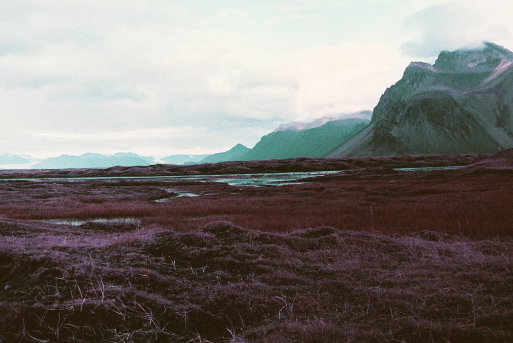 Lomochrome Purple - Stoksness 1.jpg