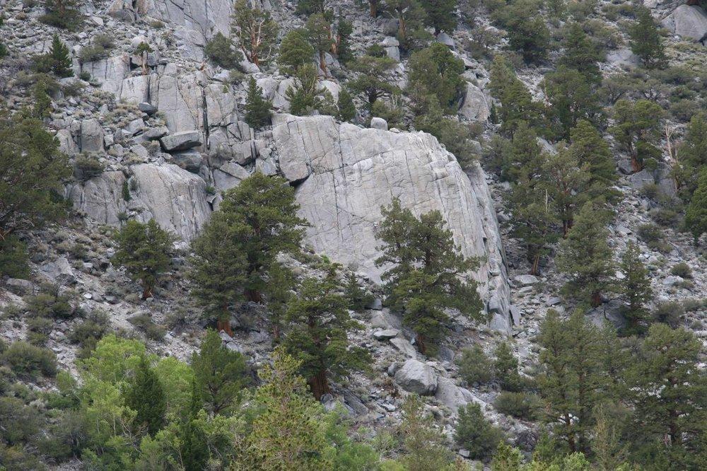 Iris Slab Rock Climbing Eastern Sierra