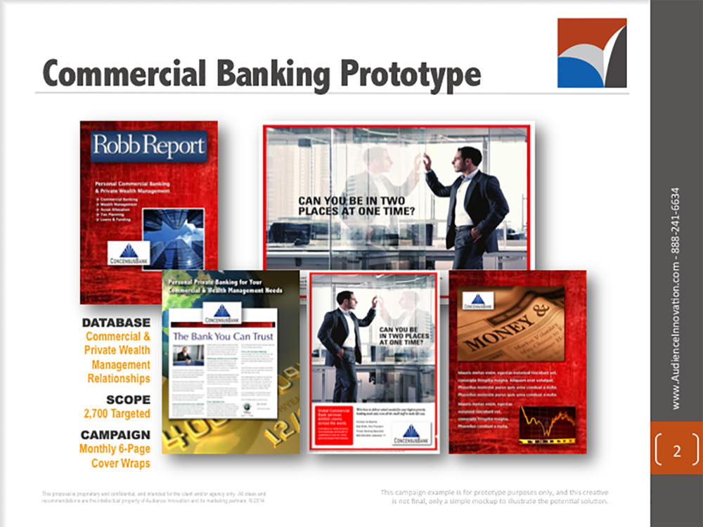 AUDIENCE INNOVATION - Precision Targeted Cover Wrap Marketing Campaigns, Banking Industry - Slide02.png