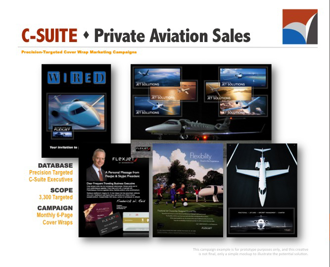 AUDIENCE INNOVATION - Precision Targeted Cover Wrap Marketing Campaigns, B2B Prototype Examples06.jpg