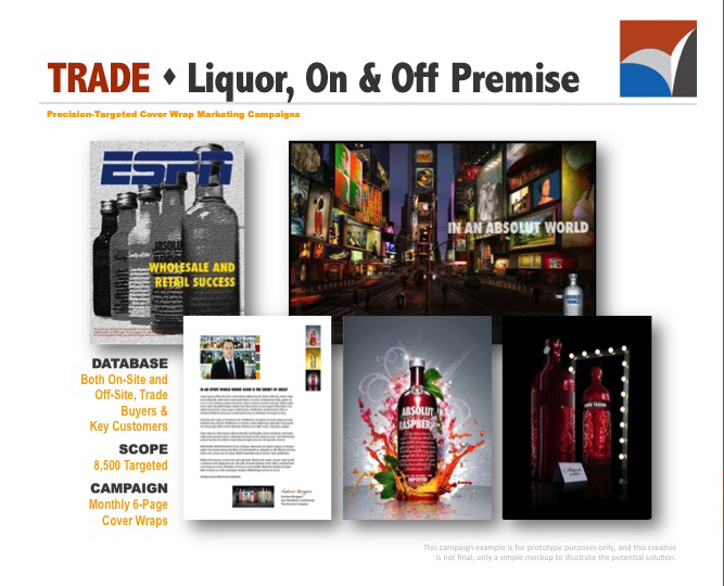 AUDIENCE INNOVATION - Precision Targeted Cover Wrap Marketing Campaigns, B2B Prototype Examples07.jpg