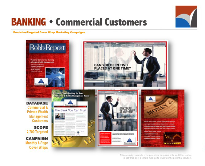 AUDIENCE INNOVATION - Precision Targeted Cover Wrap Marketing Campaigns, B2B Prototype Examples05.jpg