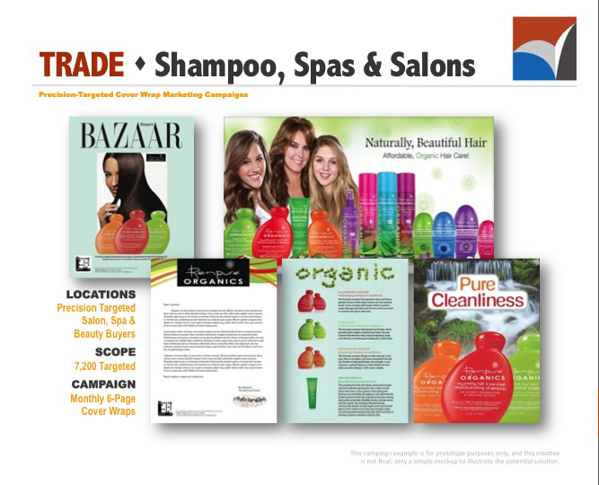 AUDIENCE INNOVATION - Precision Targeted Cover Wrap Marketing Campaigns, B2B Prototype Examples11.jpg