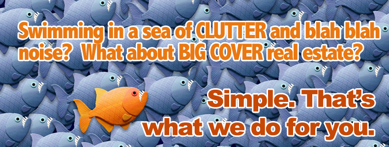 audience-innovation-magazine-cover-wrap-marketing-meme-group2-10.jpg