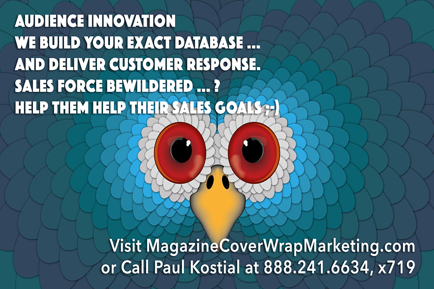 audience-innovation-magazine-cover-wrap-marketing-target-hello-success-012.png