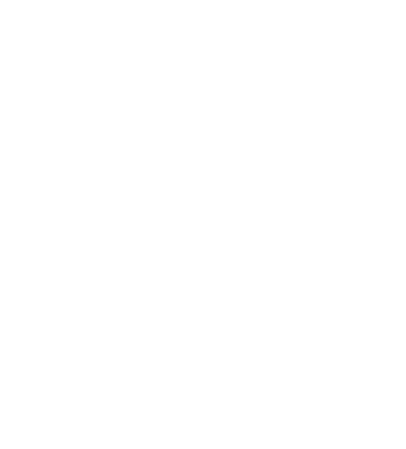 The Most Expensive Burger in Town