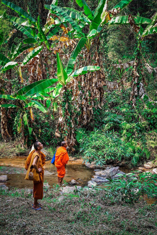 Thailand_Chiangmai_Reizen_met_kinderen_noord (76 van 97).jpg