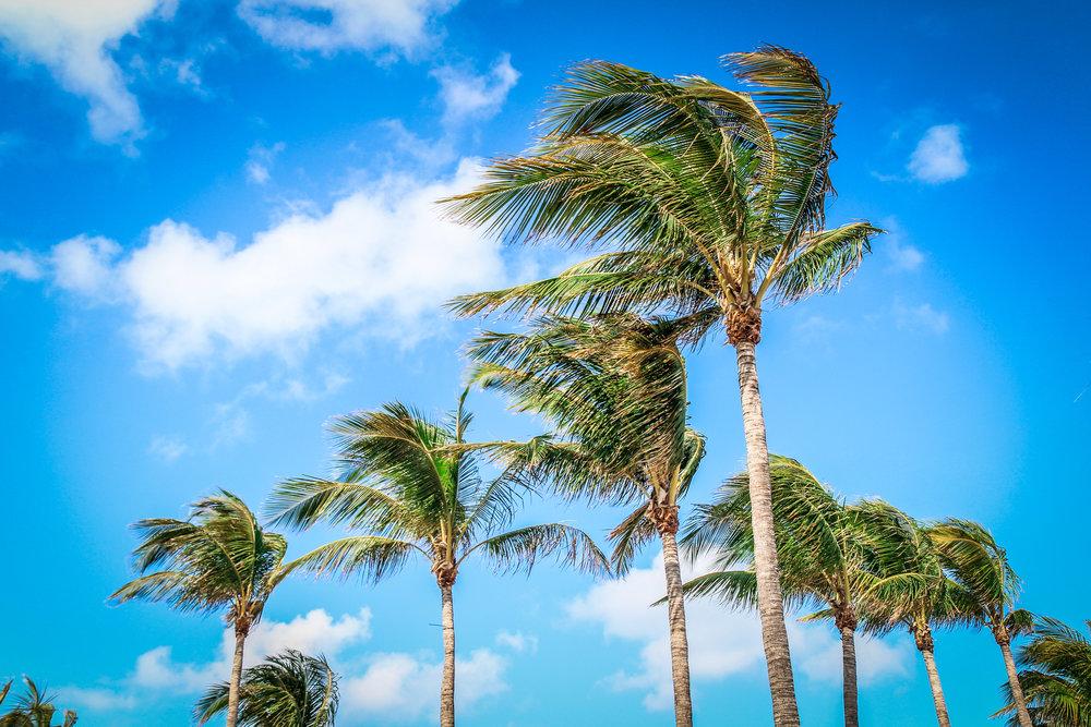 Ocean_drive_Miami_reizen_met_kinderen6.jpg