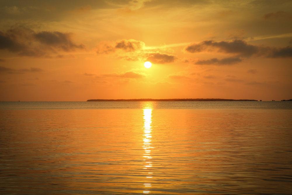 Florida_keys-_key_Largo_playa_largo_john_pennekamp_reizen_met_kindere-25.jpg