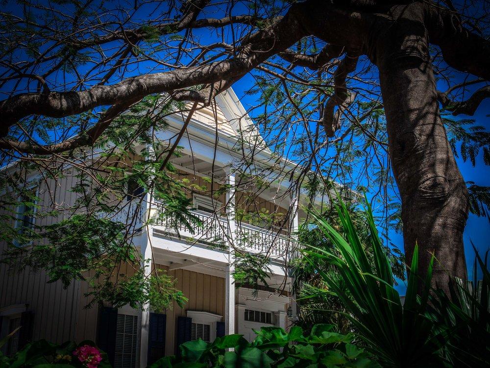 Florida_keys-_Key_west_To_do_reizen_met_kinderen-15.jpg