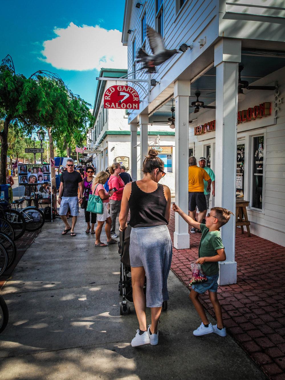 Florida_keys-_Key_west_To_do_reizen_met_kinderen-19.jpg