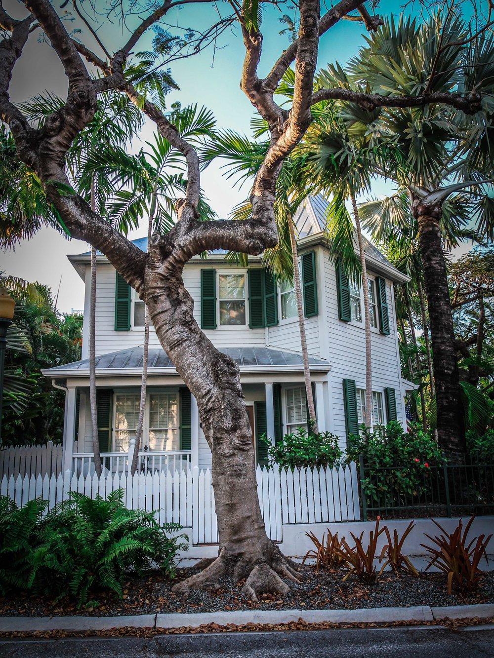 Florida_keys-_Key_west_To_do_reizen_met_kinderen-32.jpg