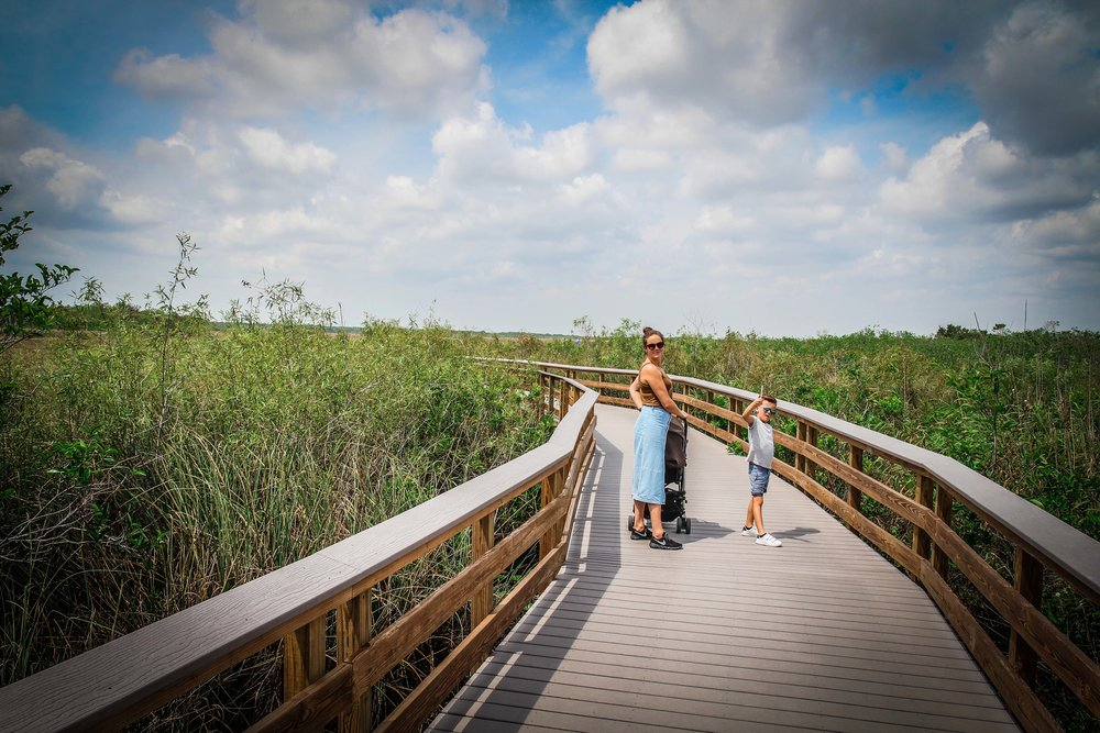 everglades_reizen_met_kinderen_Anhinga_Trail_Florida_Royal Palm Visitor Center-29.jpg