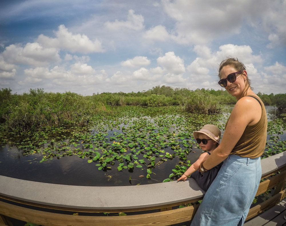 everglades_reizen_met_kinderen_Anhinga_Trail_Florida_Royal Palm Visitor Center-2.jpg