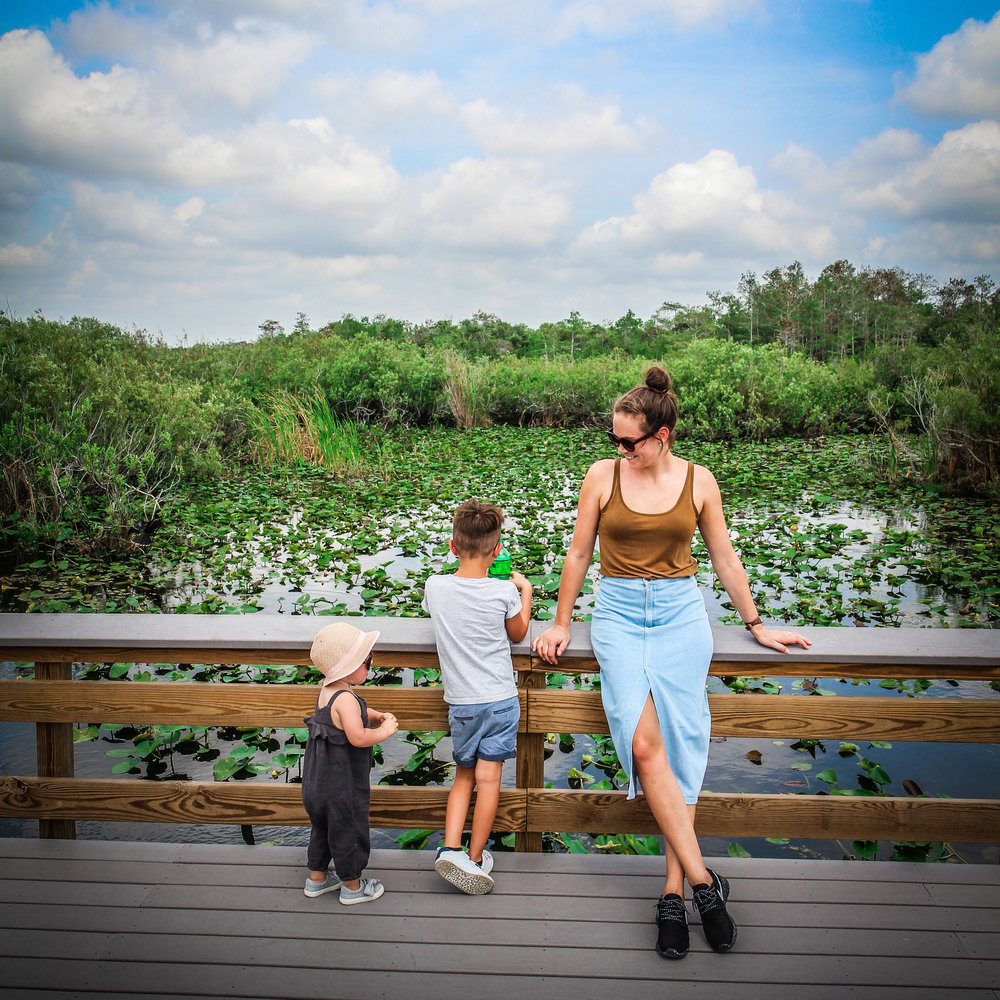 everglades_reizen_met_kinderen_Anhinga_Trail_Florida_Royal Palm Visitor Center-31.jpg