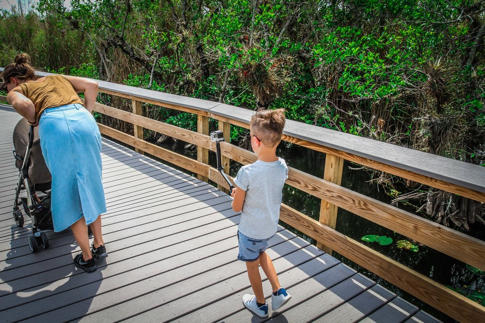 everglades_reizen_met_kinderen_Anhinga_Trail_Florida_Royal Palm Visitor Center-37.jpg