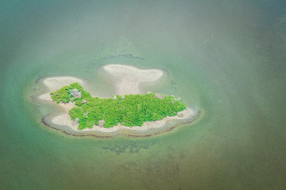 everglades_reizen_met_kinderen_10000_islands_Florida_Everglades_city-7.jpg