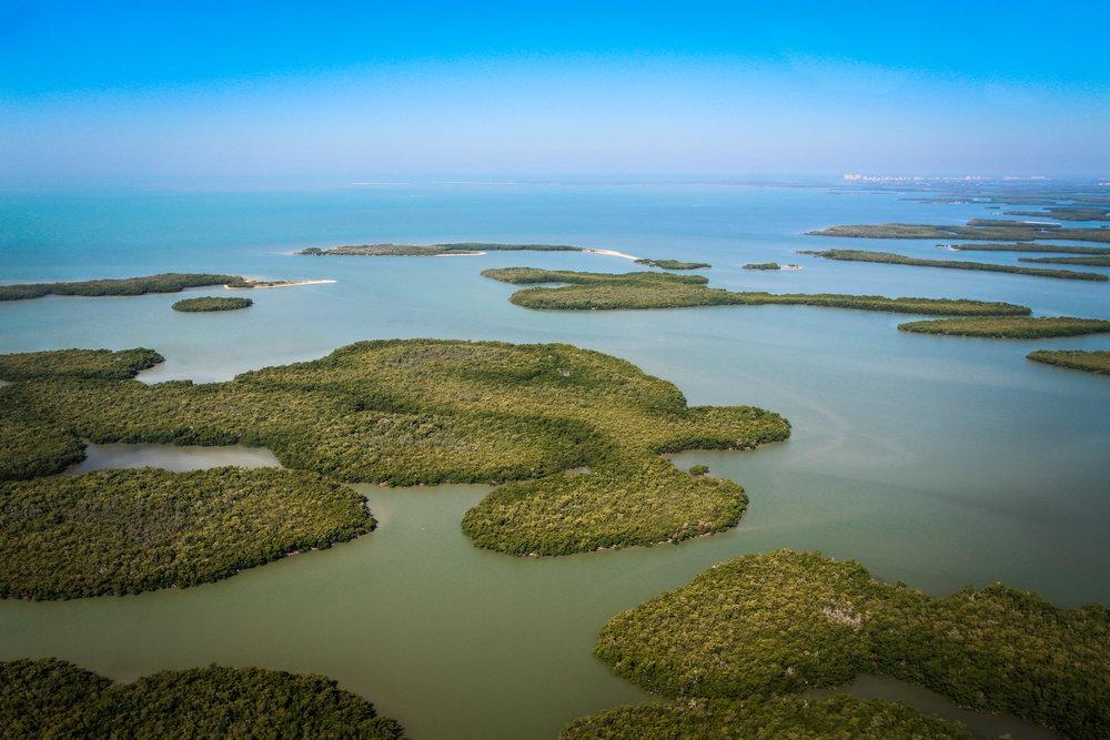 everglades_reizen_met_kinderen_10000_islands_Florida_Everglades_city-6.jpg