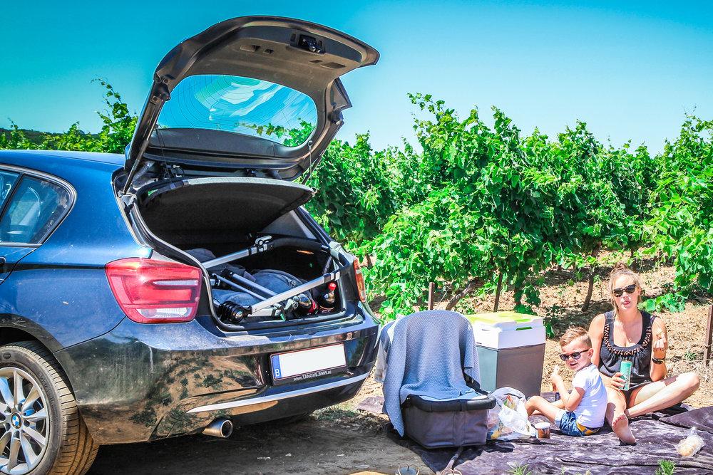 picknick langs de weg - Picknick wijngaarden