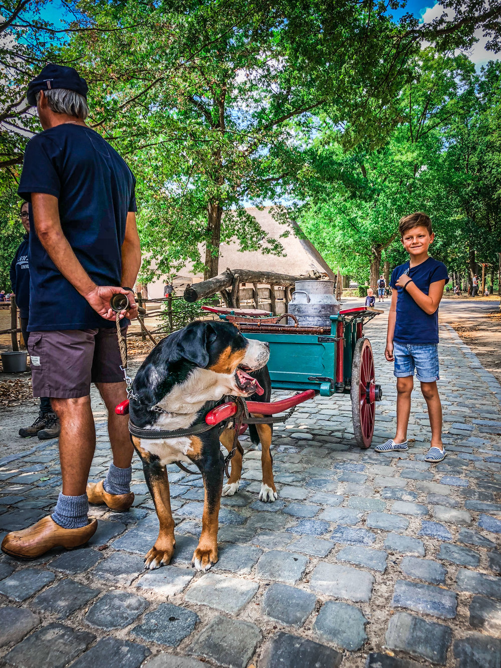 Bokrijk - Hondenkar