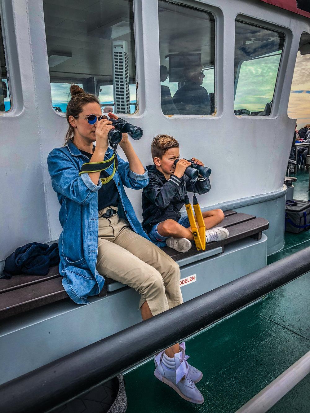 Oosterschelde - Rondvaart - Zeehonden spotten - verrekijker