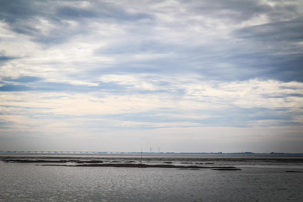 Oosterschelde - Rondvaart - Zeehonden spotten - Zeeland