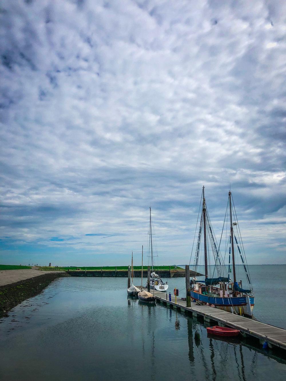 Oosterschelde - Rondvaart - Zeehonden spotten - haven