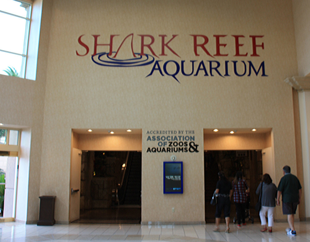 shark reef aquarium at mandalay bay_vegas met kinderen8.jpg