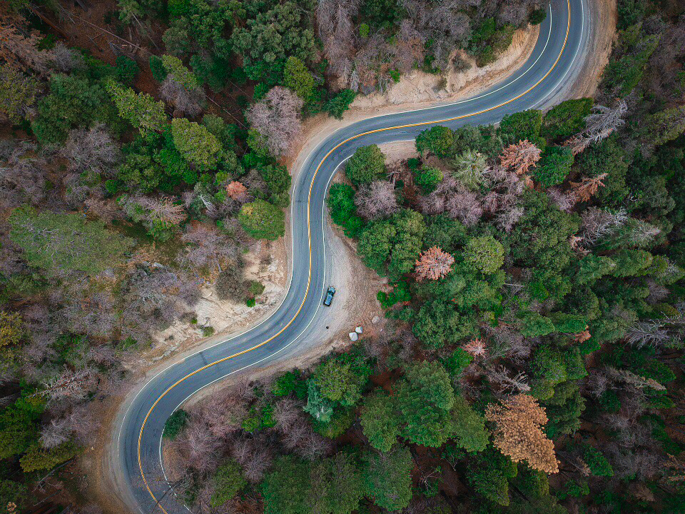 withkidsontheroad_WestKust_Sequoia-42.JPG