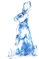 Blue_rabbit.jpg