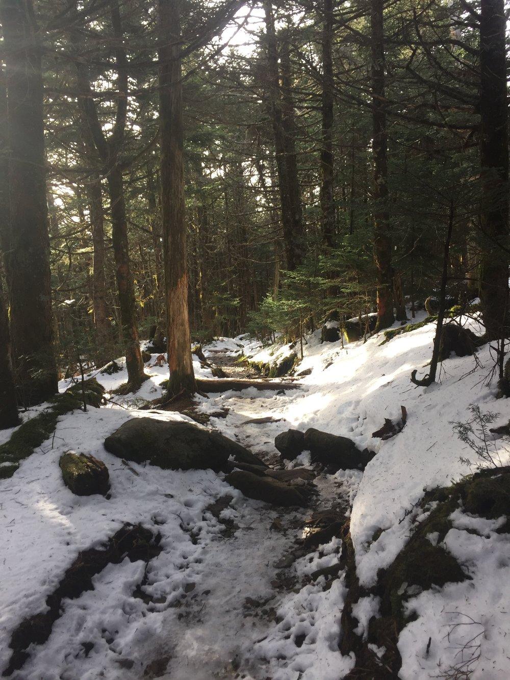 Slip n Slide Trail