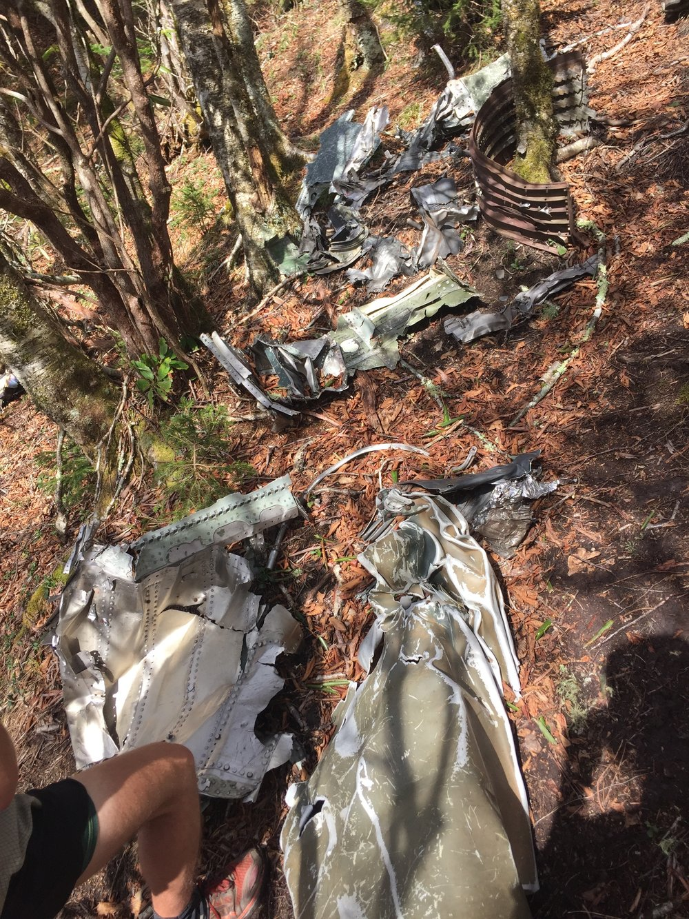 Plane Wreckage off Trail.