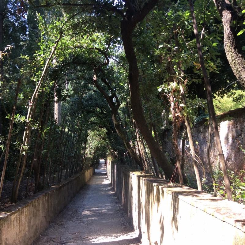 Boboli Gardens, Florence - paperiaarre.com