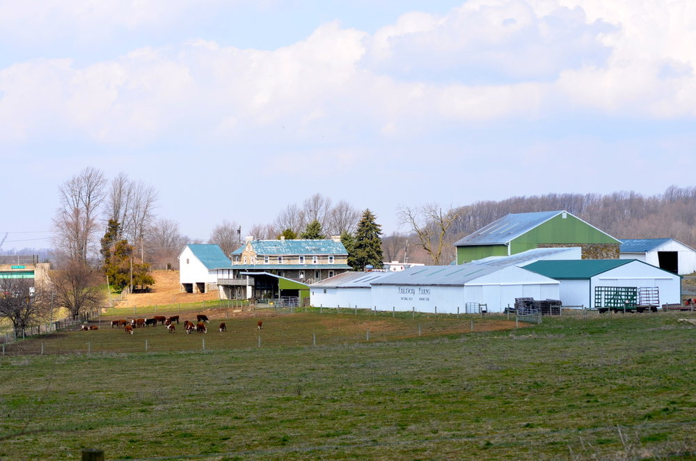 Our farm in Elverson