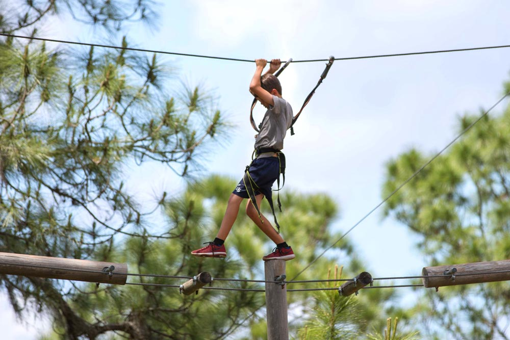 Best Outdoor Activities Around Tampa With Kids - Tampa's modern history began in the mid-1800s when the downtown area was developed at the mouth of the Hillsborough River.Read...