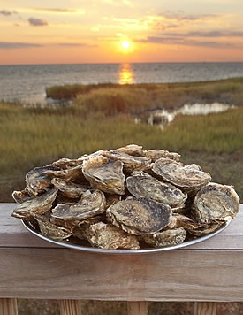 oysters_t.jpg