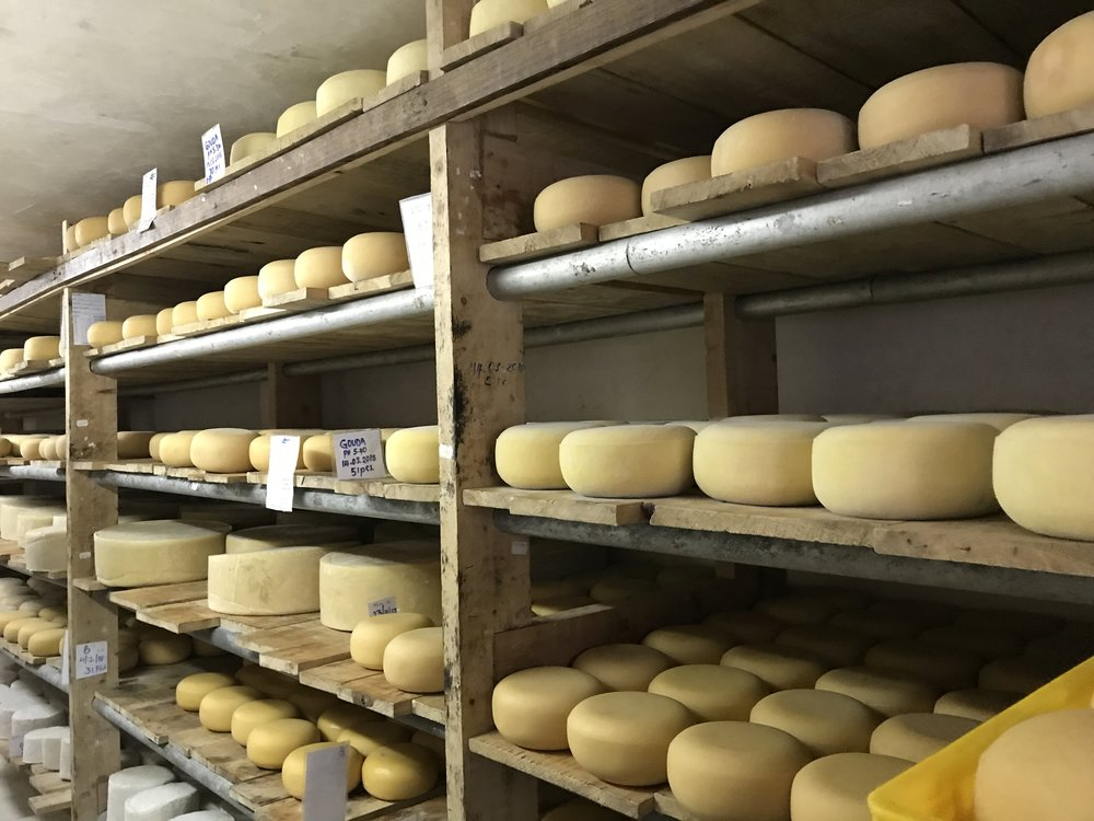 That's a lot of cheese!