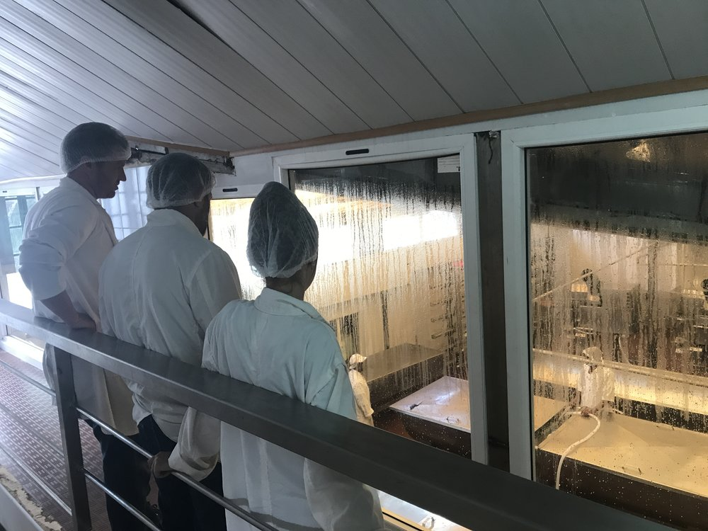 Getting a behind the scenes tour