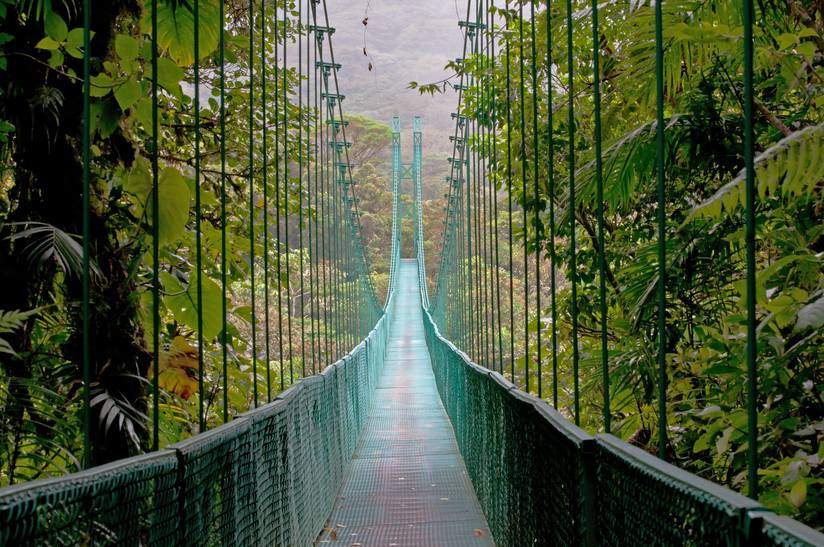 hanging-bridge-cloud-forest-monteverde-costa-rica.jpg.824x0_q71.jpg