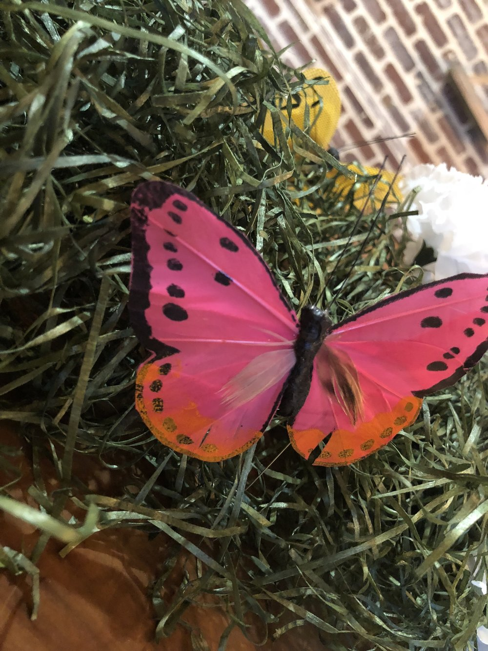 The grass and the butterflies were both found in the floral section at the Dollar Tree. Used three packs of the grass filler and 3 packages of butterfly and dragon flies to spread out.