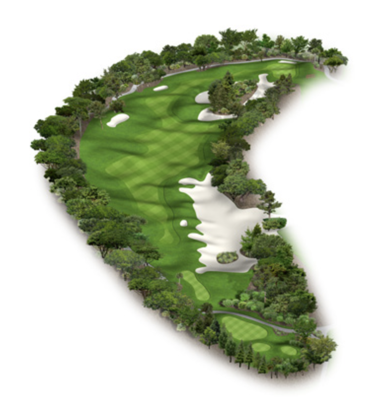 From the course description: Great risk reward par five. Look for the pin's location on the tee box. A good tee shot up the right gives you the best opportunity to see you approach shot to this hidden green. The layup can be tricky up the left. Make certain to hit enough club to get to the top of the hill.