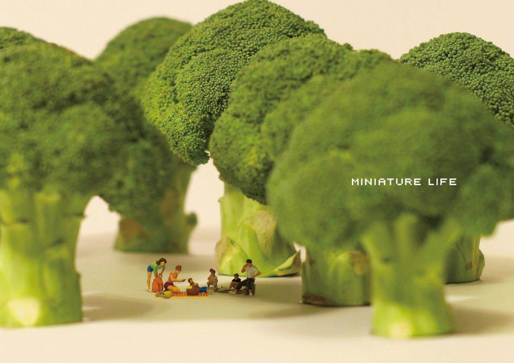 miniature-life-1024x725.jpg